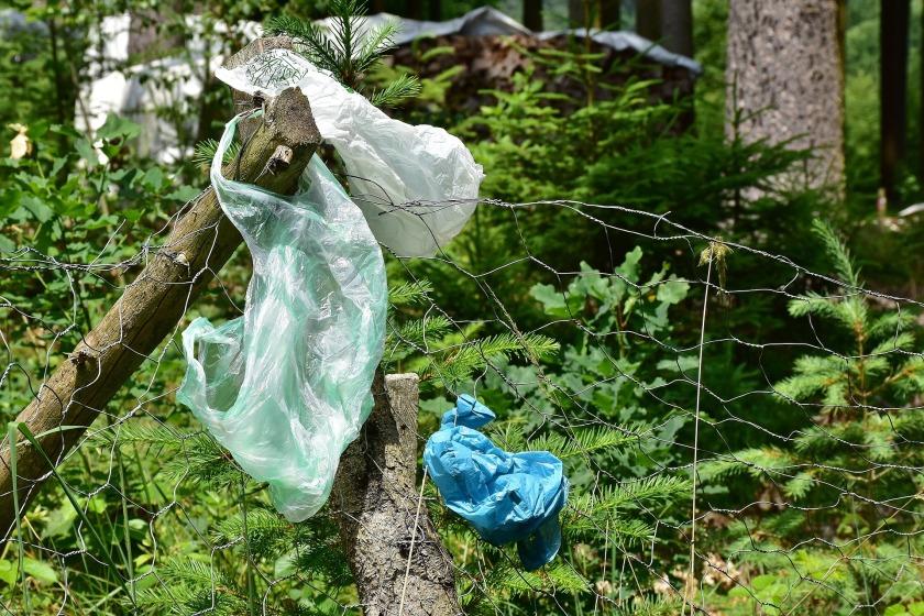 garbage-2416602_1920